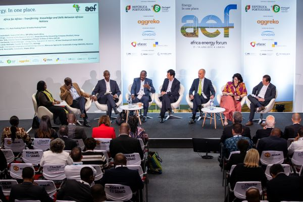 Africa Energy Forum 2020 to address SDG7 and Impact of Energy Investment